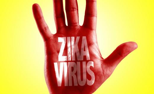 Zika cases in Australia