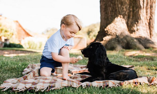 Why Prince George's Photo Of Feeding Ice Cream To His Pet Dog Is Upsetting So Many People