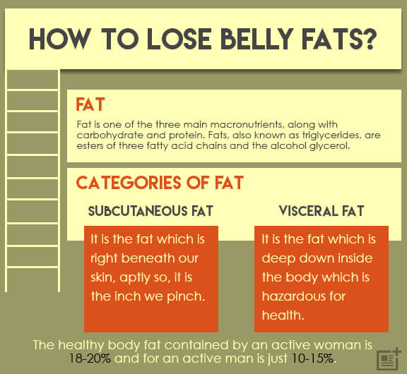 The Hidden Truths About How to Lose Belly Fat Fast