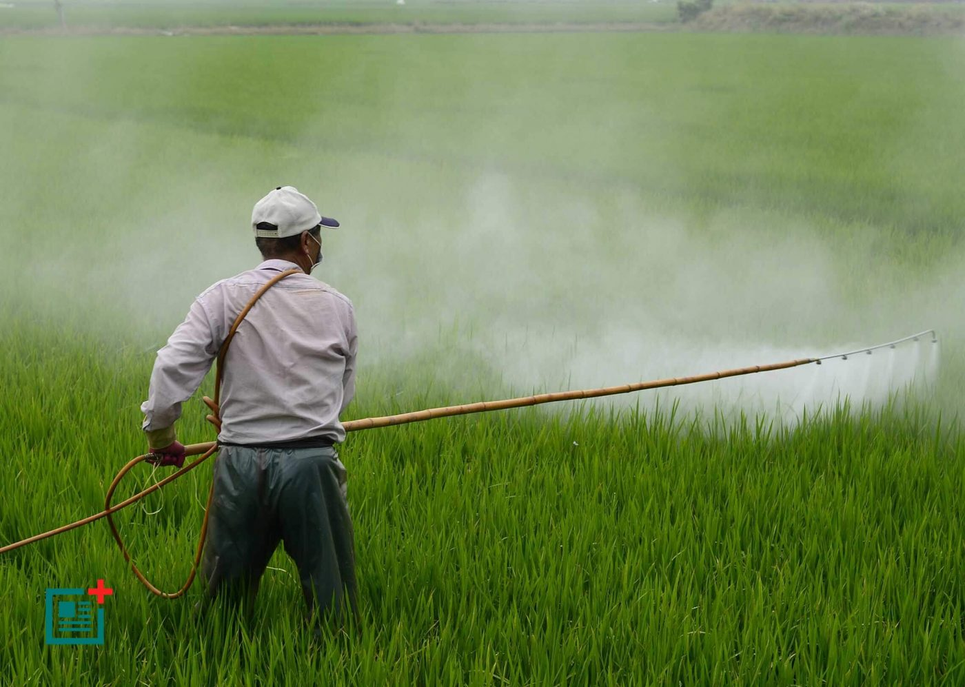 Do You Know A Pesticide Exposure Alters The Bacteria In Your Mouth?