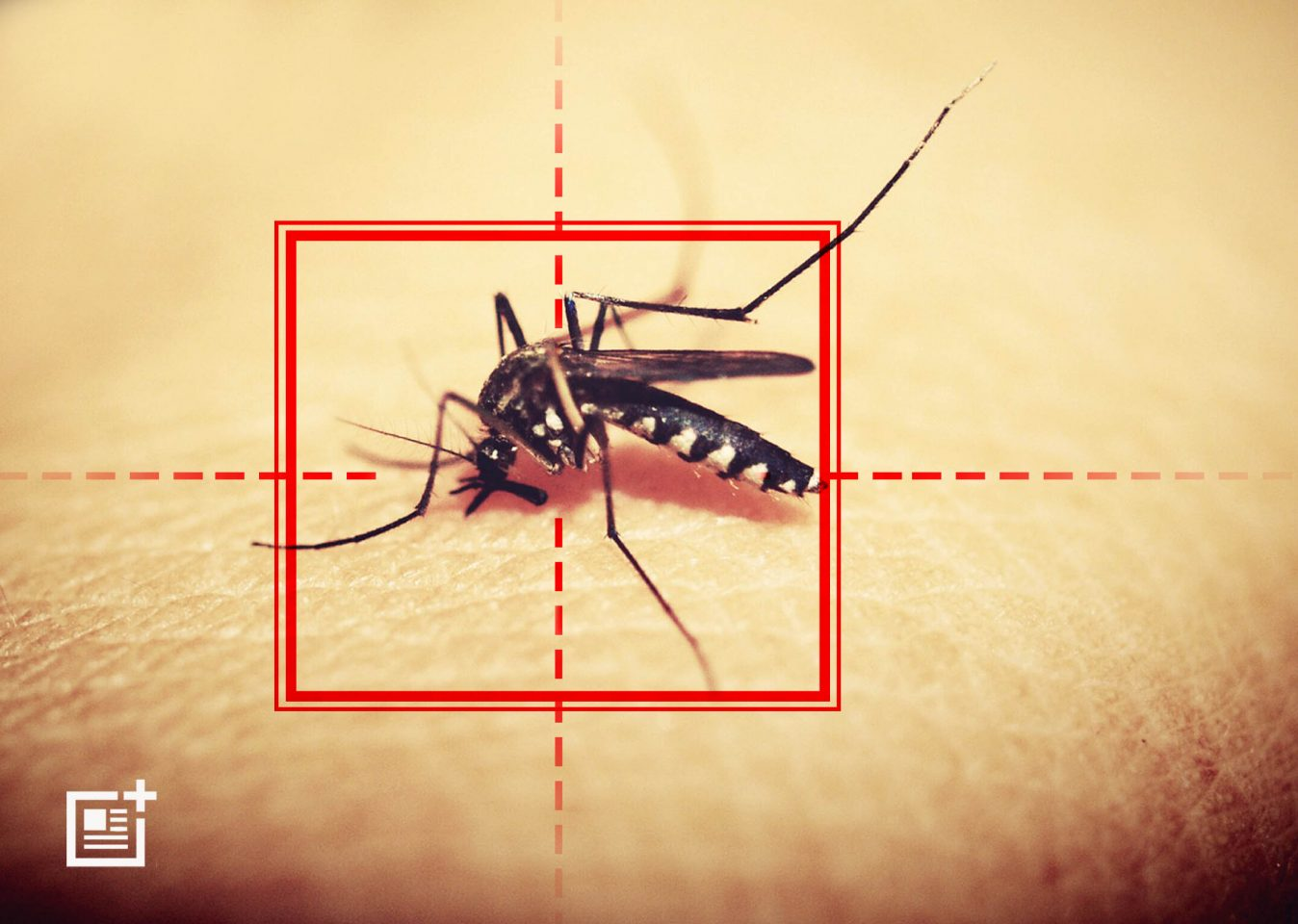 WHO Says Targets To Reduce Malaria Won't Be Met Due To Lack Of Funds